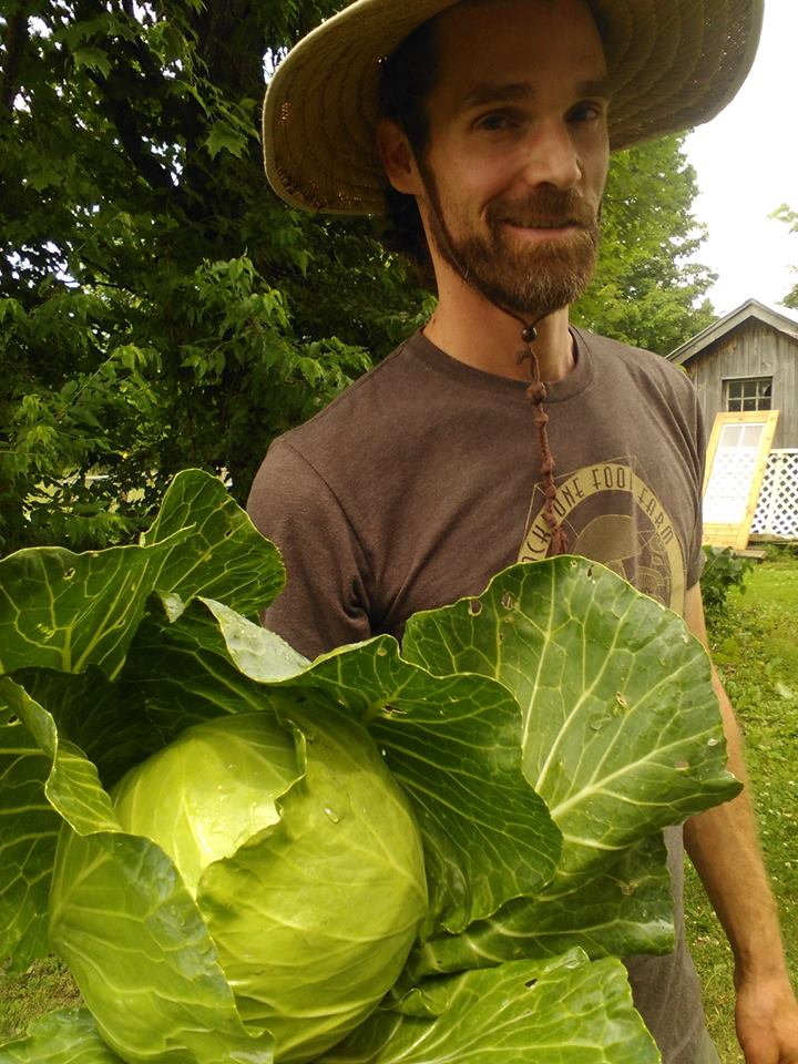 Farmer Nate grew Huge Cabbages in 2016